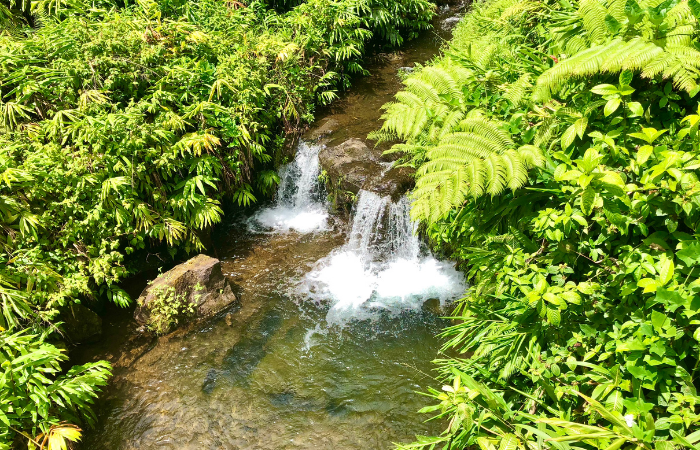 15 Things to Do on the Big Island