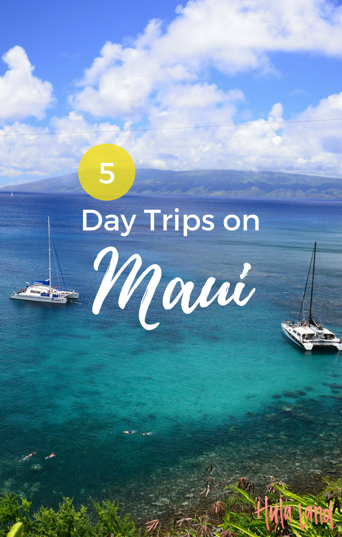 Day Trips To Maui From Big Island