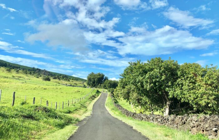 Where to Stay on Maui: Upcountry