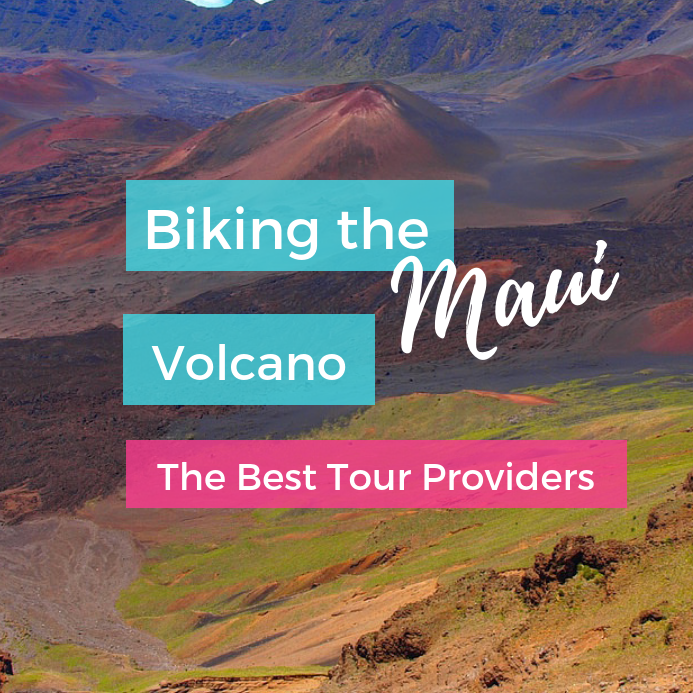 The Best Tour Operators for Biking Down Haleakala (Maui's Dormant Volcano)