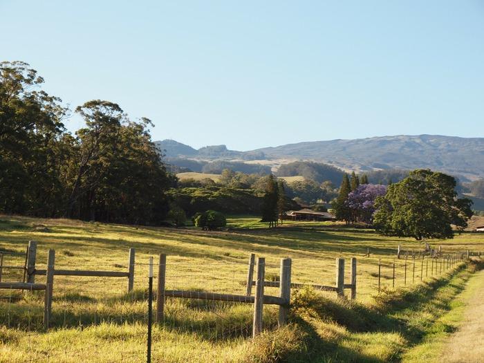 Haleakala downhill bike ride