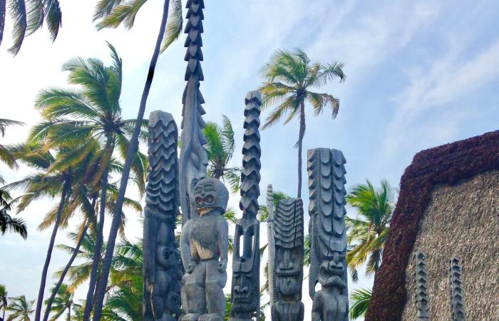 Things to Do in Kona Hawaii