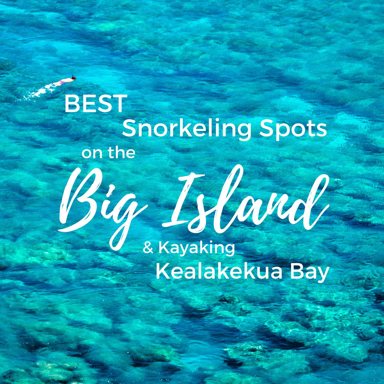 Best Big Island Snorkeling Spots (& Kayaking Kealakekua Bay)