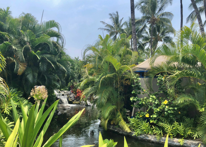 Fairmont Orchid Big Island Review