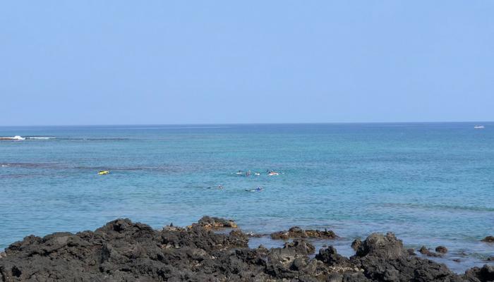 Big Island Kealakekua Bay Snorkeling
