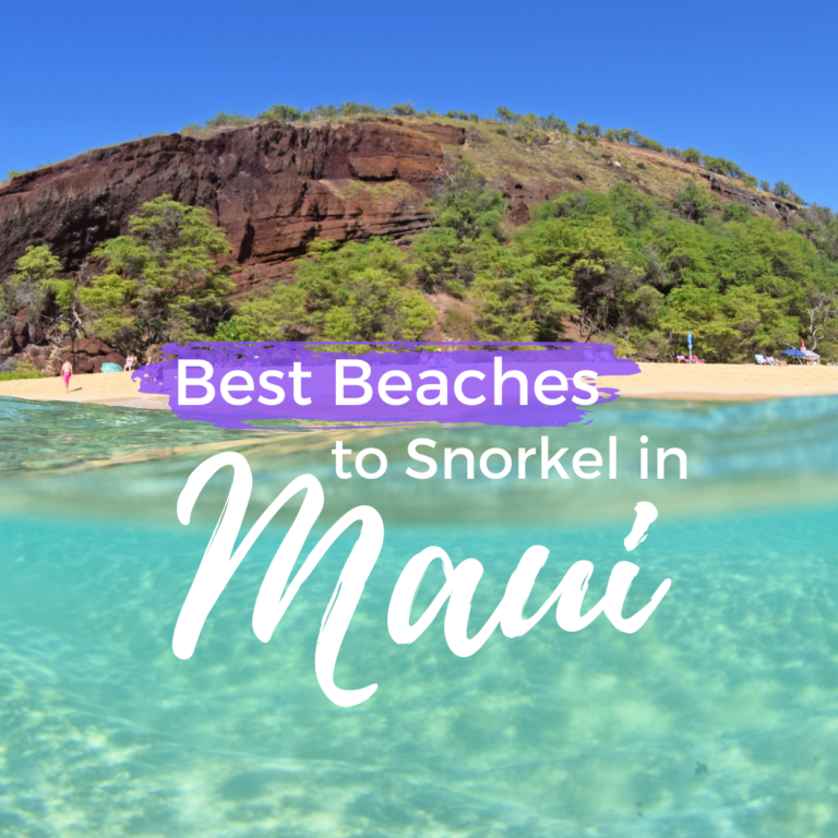 Best Snorkeling Beaches in Maui
