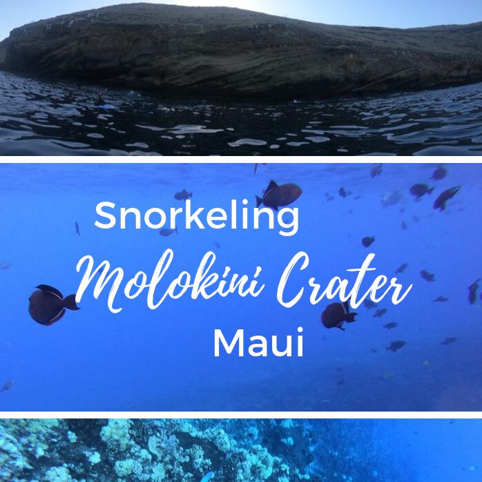 Snorkeling Molokini Crater, Maui