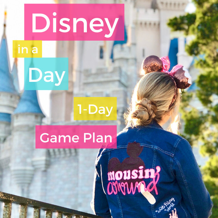 Disney in a Day