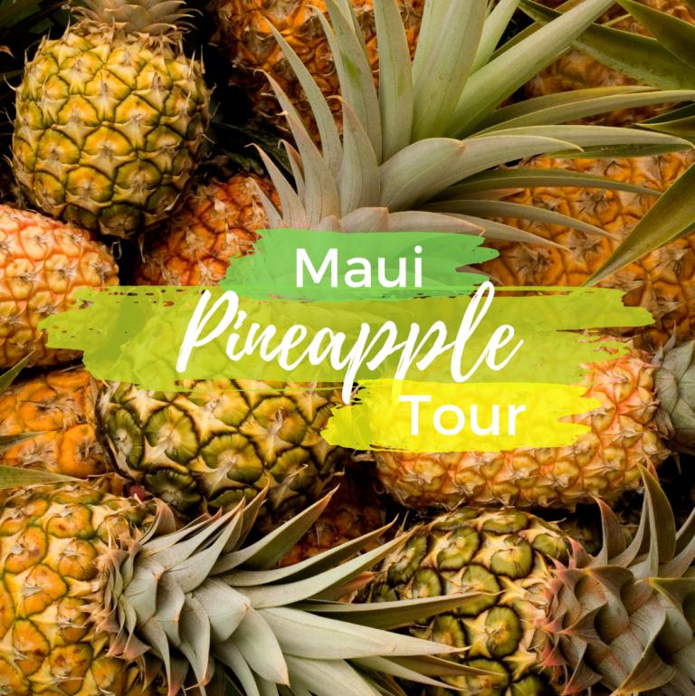 Maui Pineapple Tour!