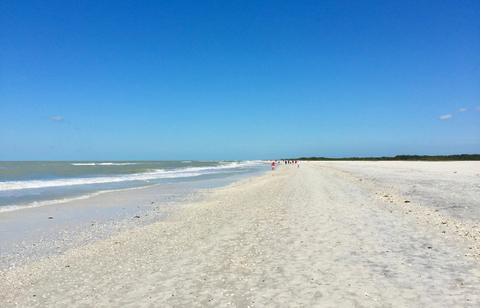 Things to Do Marco Island Florida