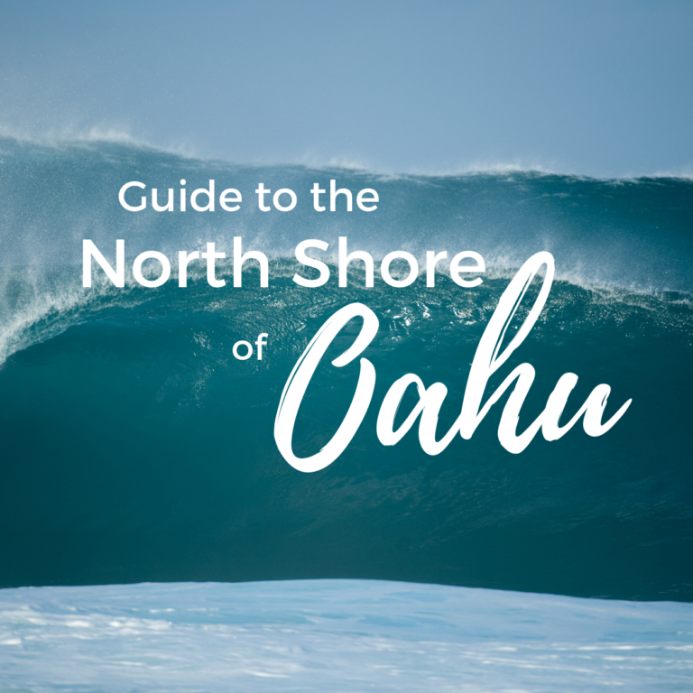 Things to Do on Oahu's North Shore