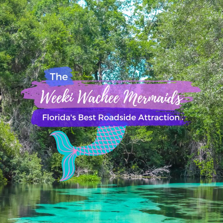 The Weeki Wachee Mermaids: An Old Florida Roadside Attraction